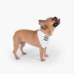 Personalized Pet Bandana, Custom Pet Bandana
